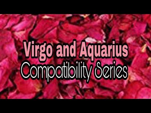 Virgo and Aquarius Compatibility