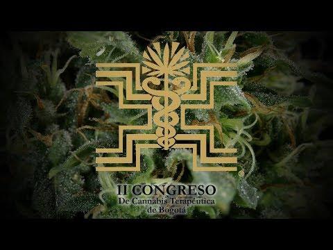 Variedades de Mariguana Colombiana LEGAL en la EXPO BOGOTÁ: Congreso de Cannabis Terapéutica (SALUD)