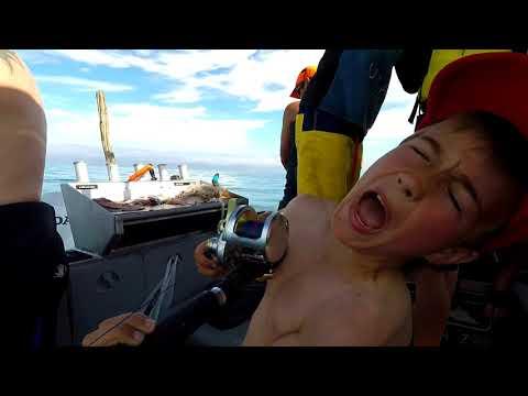 Deep Sea fishing in New Zealand, bluenose, trevella, crays, kingfish and kinas