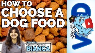 How To Choose a Dog Food | Big Al's