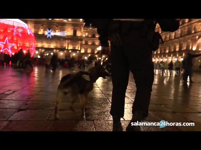 Patrullando con la Policía Local de Salamanca