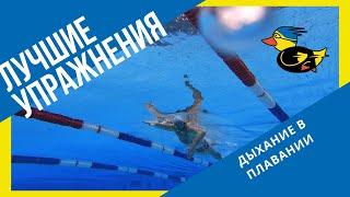Уроки плавания:  дыхание в плавании. Как плавать долго и не задыхаться. Упражнения на дыхание.