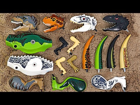 Lego Jurassic World! Find body that matches head of dinosaur! | DuDuPopTOY |