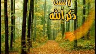 Анас Аль-Гамиди сура  Аз-Зухруф 67- 82. (с субтитрами)
