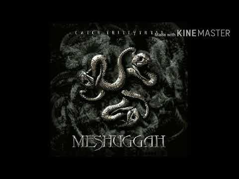 Meshuggah - Shed/Personae Non Gratae/Dehumanization/Sum