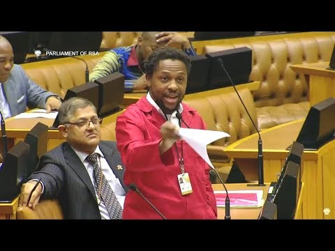 Dr Ndlozi vs David Mabuza In Parliament