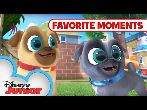 Puppy Playcare Part 2!  Compilation | Puppy Dog Pals | Disney Junior