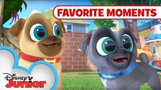 Puppy Playcare Part 2! 🐾 Compilation | Puppy Dog Pals | Disney Junior