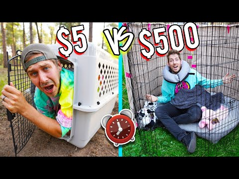 OVERNIGHT SURVIVAL CHALLENGE *PET STORE ITEMS ONLY*