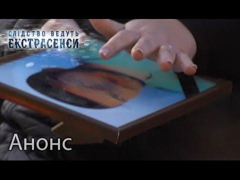 Следствие ведут Колобки - смотреть онлайн мультфильм