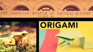 Origami At The Museum: Fold A Jumping Frog In 13 Easy Steps