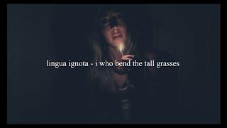 lingua ignota - i who bend the tall grasses // español