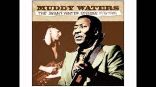Muddy Waters - Copper Brown