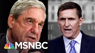 New Details On Robert Mueller's Investigation Of Michael Flynn | The 11th Hour | MSNBC