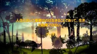 長谷川桜子(保育士):子供たちにも伝えたいと思った名言をチョイスし...