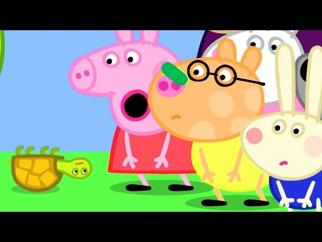 Peppa Pig Official Channel | Tiddles the Tortoise Falls on Pedro's Nose