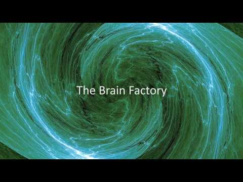 The Brain Factory (updated video)
