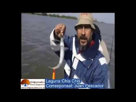 DELPESCADORTV PROG 66 Corvinas Negras en Uruguay,Pejerreyes en Adela,Chis Chis y La Balandra
