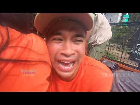 BROWNIS - Boiyen Ketakutan Hampir Nangis   Ngasih Harimau Makan Daging! (11/8/19) Part 3