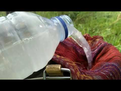 cara-membuat-dan-menggunakan-pestisida-alami-dari-bawang-putih---ampuh-mengendalikan-hama