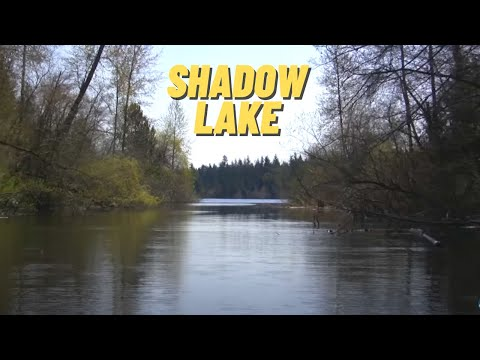 Shadow Lake In King County