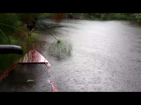 Relaxing Rain Sounds on the Lake for Sleep, Meditation, Study or Soothing a Baby