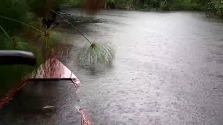 Entspannende Regen Klänge auf dem See für Schlaf, Meditation, Studieren oder Beruhigende ein Baby