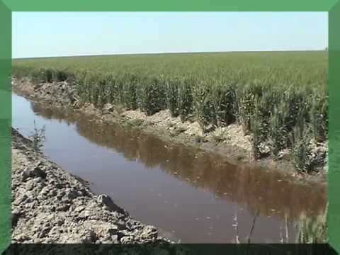 The plight of the San Joaquin Valley, California