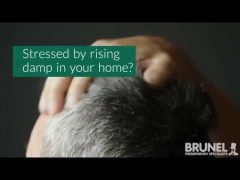 Rising Damp Bath - Brunel Preservations