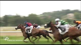 Vidéo de la course PMU BARES DEL HIPODROMO