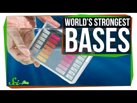 The Strongest Bases in the World