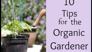 Top Ten Organic Gardening Tips