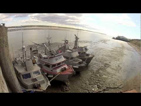 Bristol Bay Fishing - 2012 (GoPro HD)