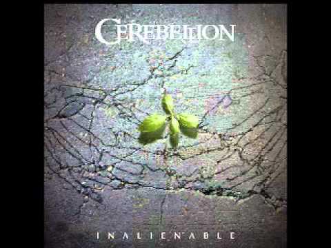 Download Cerebellion - Embrace the Imperfection (Studio Version)