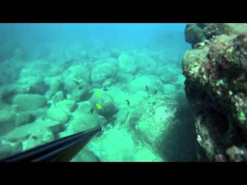 Omilu Madness! Hawaii Skin Diver GoPro Test