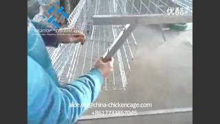 Install video of Full automatic chicken egg layer cages/poultry farm equipment