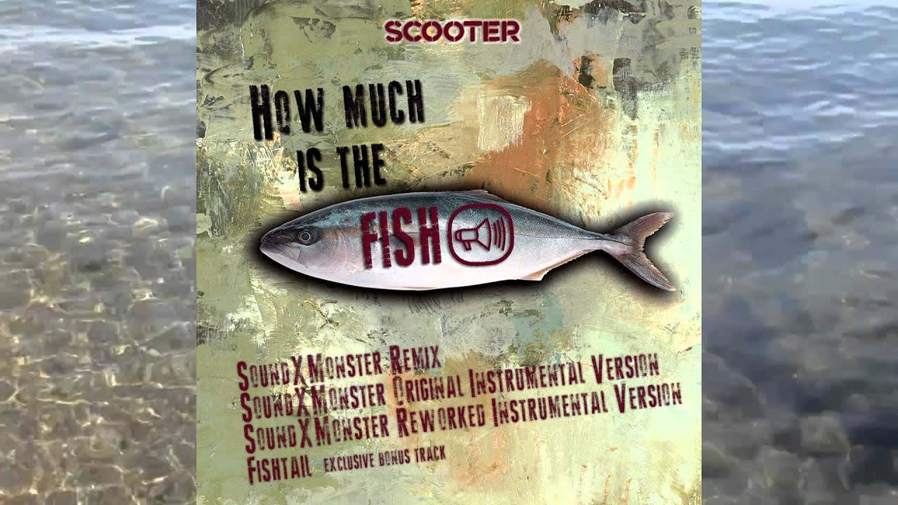 How Much Is The Fish? (Sound-X-Monster Remix