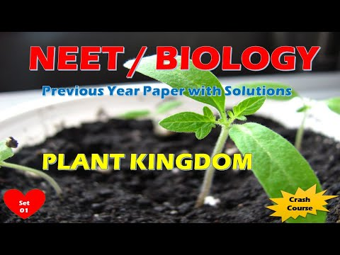 Your NEET Preparation Made Easy   Biology   Episode - 11-03   Crash Course for Self Preparation from YouTube · Duration:  39 minutes 58 seconds