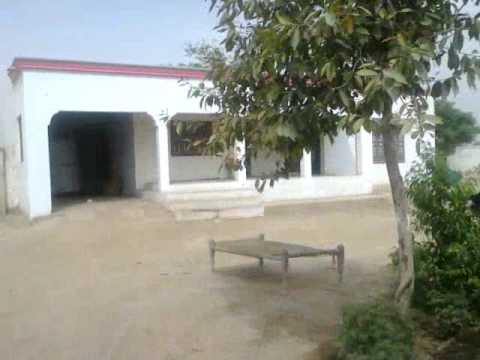 Nice & Attractive FARM HOUSE. Vehari, Pakistan