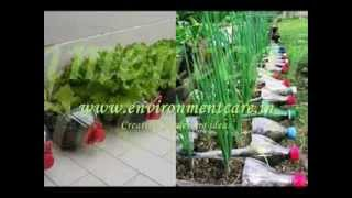 Creative Gardening ideas with Re use of waste material - EnvironmentCare.in
