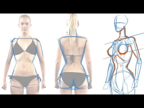 How to draw the female figure and torso