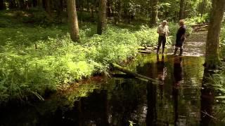 Ocalony świat - odc.11 - Na mokradłach życie kwitnie