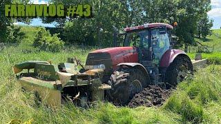 FARMVlog #43 - Paula opět v nesnázích, Pomoc z farmy