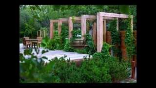 Пергола - самая простая деревянная конструкция !