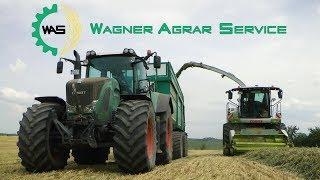 CLAAS Jaguar 980 | WAGNER AGRARSERVICE häckselt Grünroggen | Mercedes LKW | FENDT Traktoren