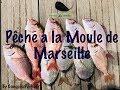 Houle et Moule Marseillaise