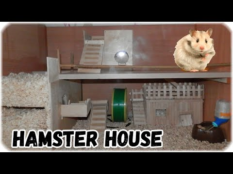 Грандиозный переезд хомяка в новый дом.  Дом хомяка своими руками /  House hamster own hands