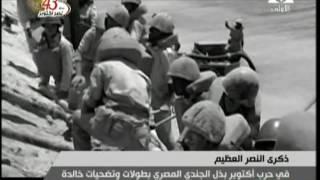 فيديو.. مذيعة بالتلفزيون المصري تقع في خطأ على الهواء