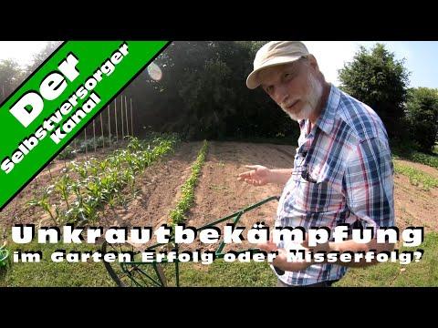 Unkrautbekämpfung im Garten Erfolg oder Misserfolg?