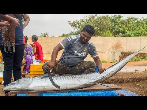Live 25 Kg's Big KING FISH CUTTING | Fisher Man